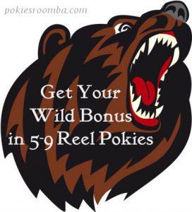 Online Pokies with 5&9 Reels